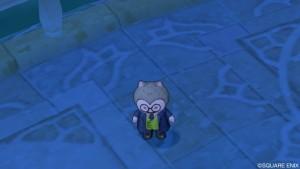 青い服でメガネのプクリポ「プチー」